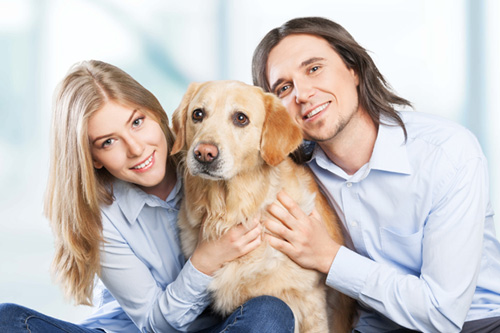 Cytoxan Cost For Dogs